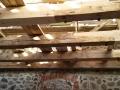 005 puittalade puhastamine soodaprits lae renoveerimine